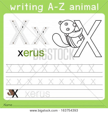Illustrator of writing a-z animal x for kid