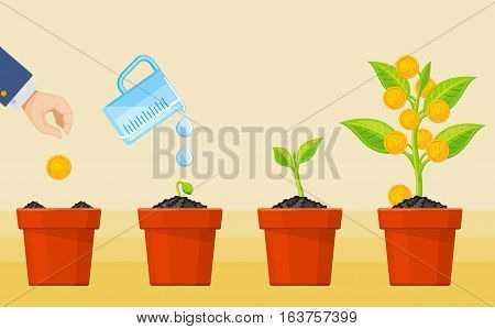 Money tree growing. Money business economic investment vector concept. Order and plan growing money tree illustration