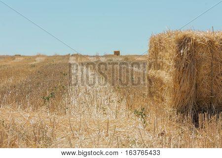 Stack of hay in summer in Castile-La Mancha, Spain, with copyspace