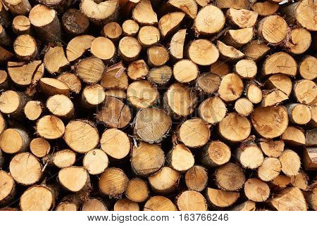 big pile of firewood background pattern wood