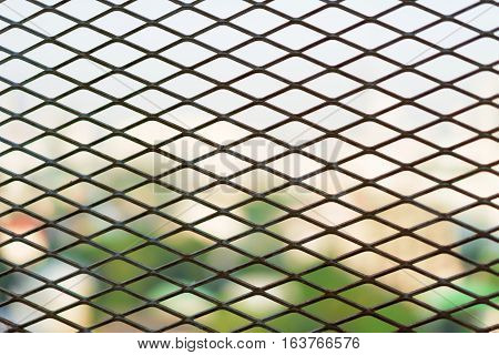 Steel Cage diamond foreground bushes in loe light.