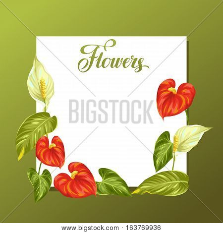 Decorative frame with flowers spathiphyllum and anthurium.