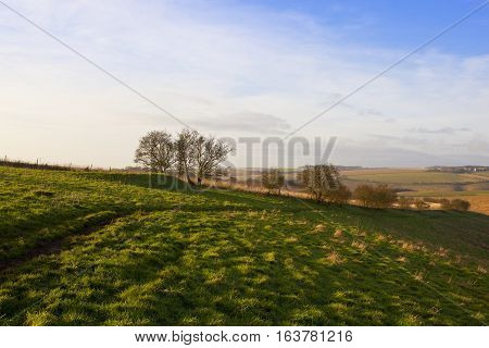 Green Meadow And Burial Mound