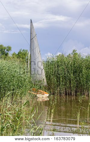 Sailboat landed to the shore which is surrounded by green reed sea and blue sky. Piirissaar Estonia Europe.