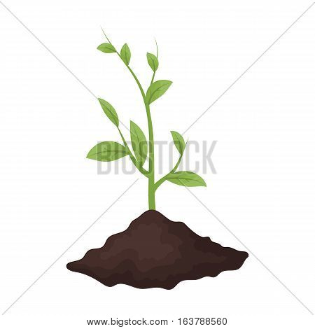 Sprout icon in cartoon design isolated on white background. Bio and ecology symbol stock vector illustration.