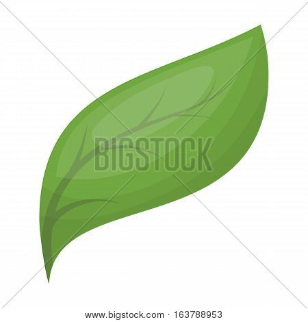 Eco leaf icon in cartoon design isolated on white background. Bio and ecology symbol stock vector illustration.