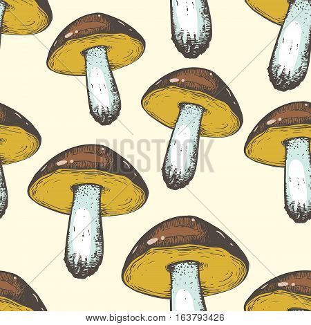 Vector illustration with porcini pattern. Hand-drawn sketch of mushrooms. Seamless food background for restaurant menu. Forest style.