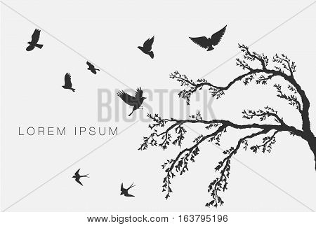 flock of flying birds on tree branch
