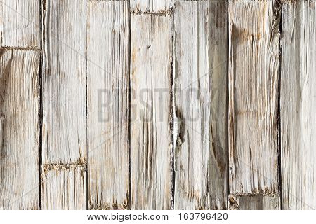 Wood Background White Wooden Planks Texture Grained Timber Wall with Rough Woodgrain Plank