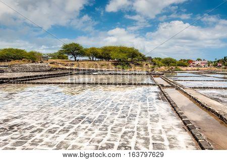 Tamarin Mauritius - December 8 2015: Salt Production at Mauritius. Salt from the Indian Ocean.