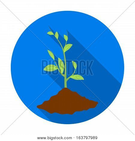 Sprout icon in flat design isolated on white background. Bio and ecology symbol stock vector illustration.