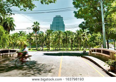 Lumphini Park scenery, Bangkok ,Thailand. Asia travels