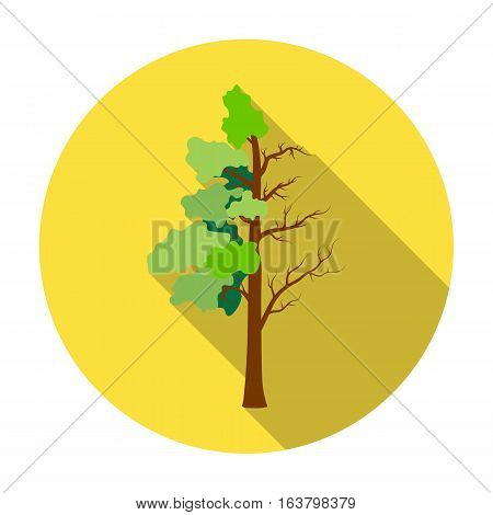 Tree half full of green leaf and half dry icon in flat design isolated on white background. Bio and ecology symbol stock vector illustration.