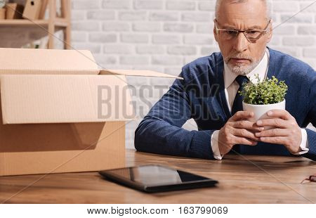 What have I done wrong. Concerned sad mature businessman holding his office plant while thinking about mistakes leading to his failure