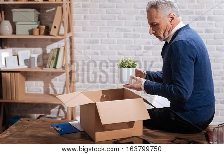 This is all I have. Desperate thoughtful elderly executive holding his favorite office plant and staring at it while packing things after dismissal