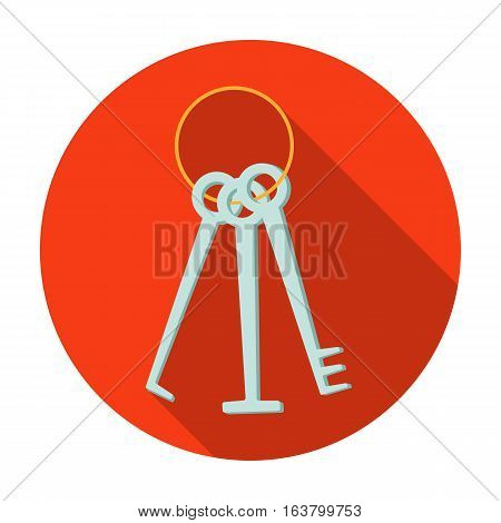 Hacker's lockpicks icon in flat design isolated on white background. Hackers and hacking symbol stock vector illustration.