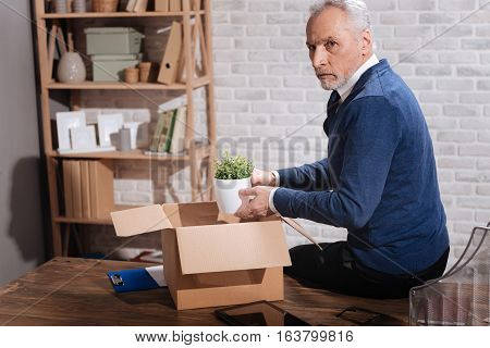 I do not want to leave. Stylish sad elderly man putting his plant in a box while packing his belonging after his contract being terminated