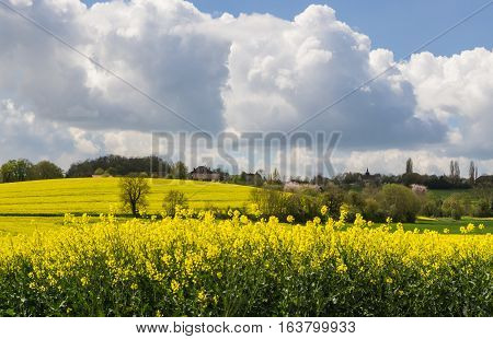 Agricultural landscape in France in spring with rape seed fields and blue cloudy sky.