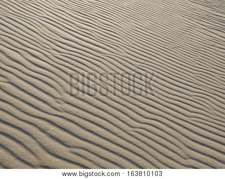 Remote Arid Sand Hill with Wind Swept Ripples