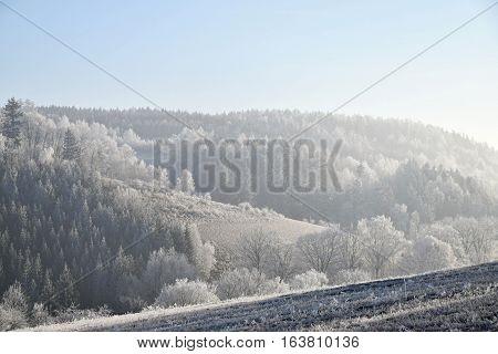 Frostbitten landscape blue sky. Landscape fog frost.