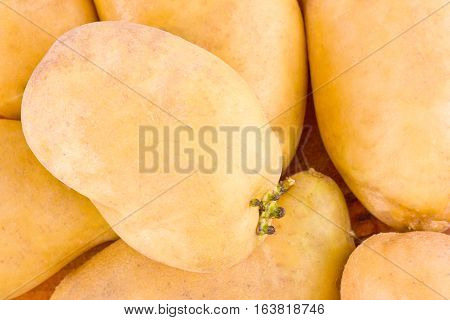 potatoes tubers  from the market on background healthy potato Vegetable food isolated