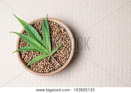 Marijuana Plant And Cannabis Seeds