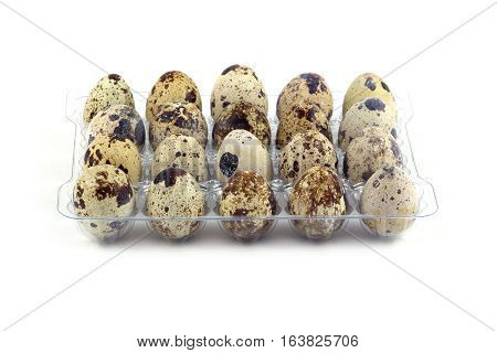 Many mottle quail eggs in plastic packaging cells isolated on white front view closeup