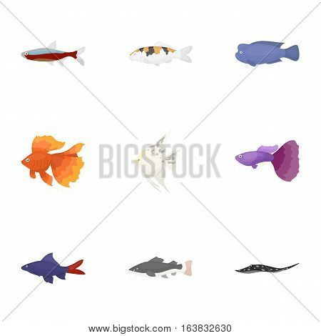 Aquarium fish set icons in cartoon style. Big collection of aquarium fish vector symbol stock