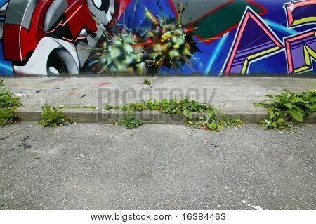 Graffiti covered wall and overgrown footpath, cigarette butts strewn everywhere.