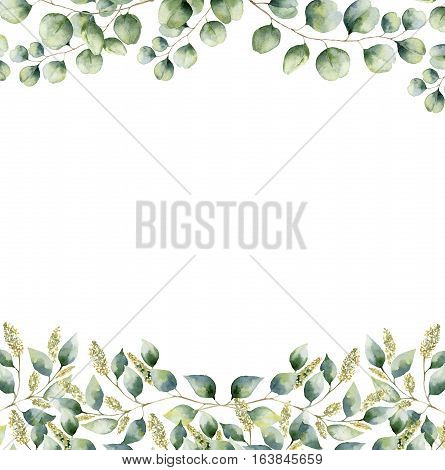 Watercolor floral frame card with silver dollar and seeded eucalyptus leaves. Hand painted border with branches and leaves of eucalyptus isolated on white background. For design or background.