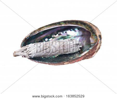 Sage smudge stick in bright polished rainbow abalone shell isolated on white background