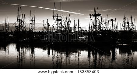 Boats docked in a marina in black and white silhouette