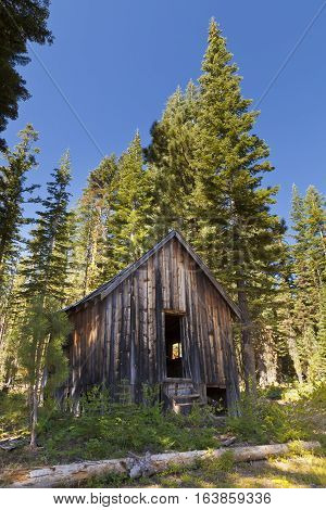 Old abandoned shack in the woods in ghost town of the Lucky S Mine