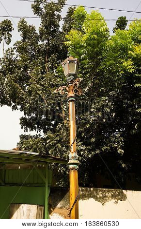 a street lights standing near a big tree photo taken in Semarang Indonesia java
