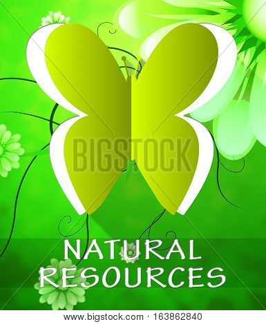Natural Resources Butterfly Shows Nature Assets 3D Illustration