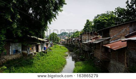 Slums near river with bushes and big tree photo taken in Semarang Indonesia java