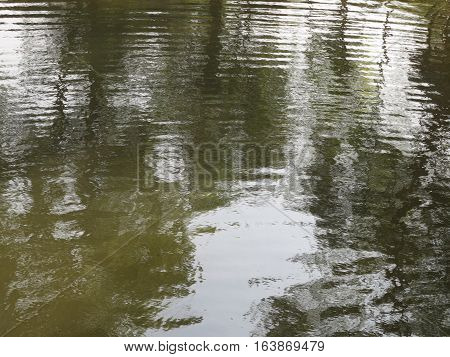 Reflection of of trees mirrored on rippled water surface background