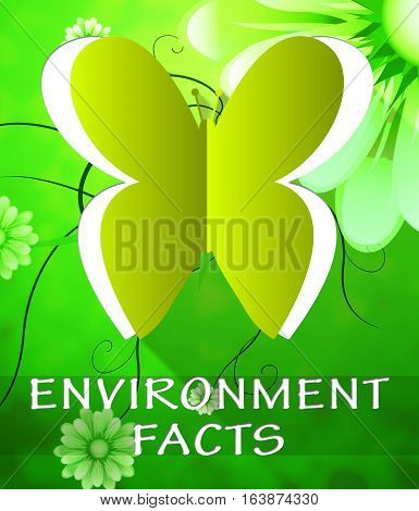 Environment Facts Butterfly Shows Nature 3D Illustration