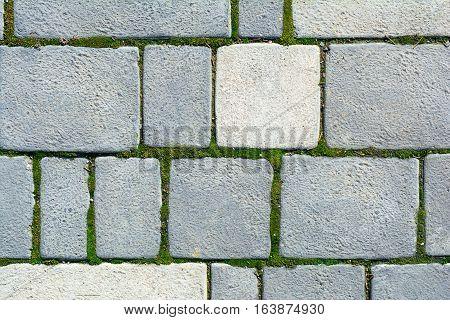 Paving tile background. Paving footpath in garden