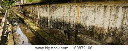 Long mossy wall photo taken in Semarang Indonesia java