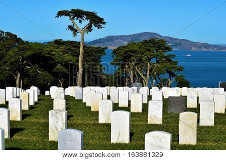 Row of white headstones overlooking the San Francisco Bay taken at the Presidio National Cemetery in San Francisco, CA