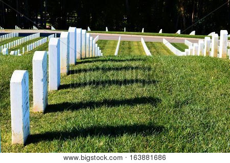 White grave headstones placed in rows on a green lawn taken at the Presidio National Cemetery in San Francisco, CA