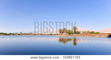 Oasis In The South Of Israel