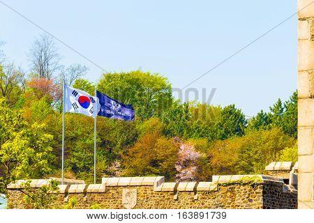 Yonsei University Korean Flag Trees Background