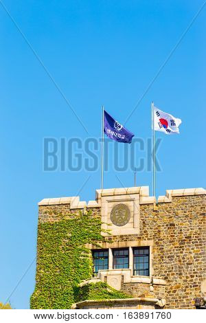 Yonsei University Korean Flags Ivy Building Top V
