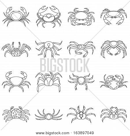 Various crab icons set. Outline illustration of 16 various crab vector icons for web
