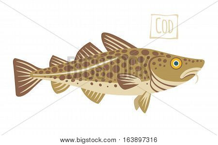 Brown spotted Cod, vector  illustration cartoon style