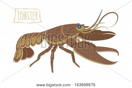 Brown Lobster alive, vector  illustration cartoon style