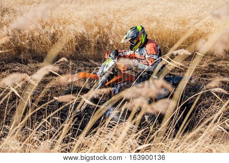 KHABAROVSK RUSSIA - OCTOBER 23 2016: Enduro bike rider on a field with dry grass in autumn.