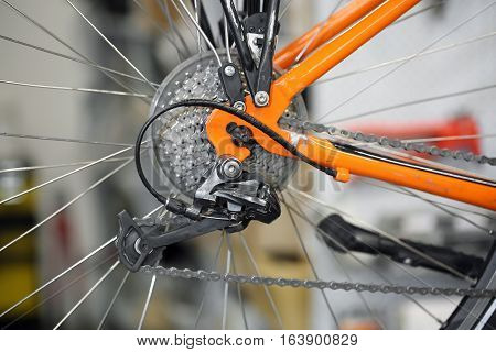 Chain Rings And Rear Derailleur Of A Bike